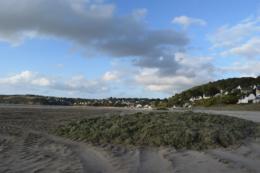 Des algues vertes sont encore ramassées sur la plage de Saint-Miche-en-Grève, la semaine du 18 septembre. Photo : Aurélien Defer.