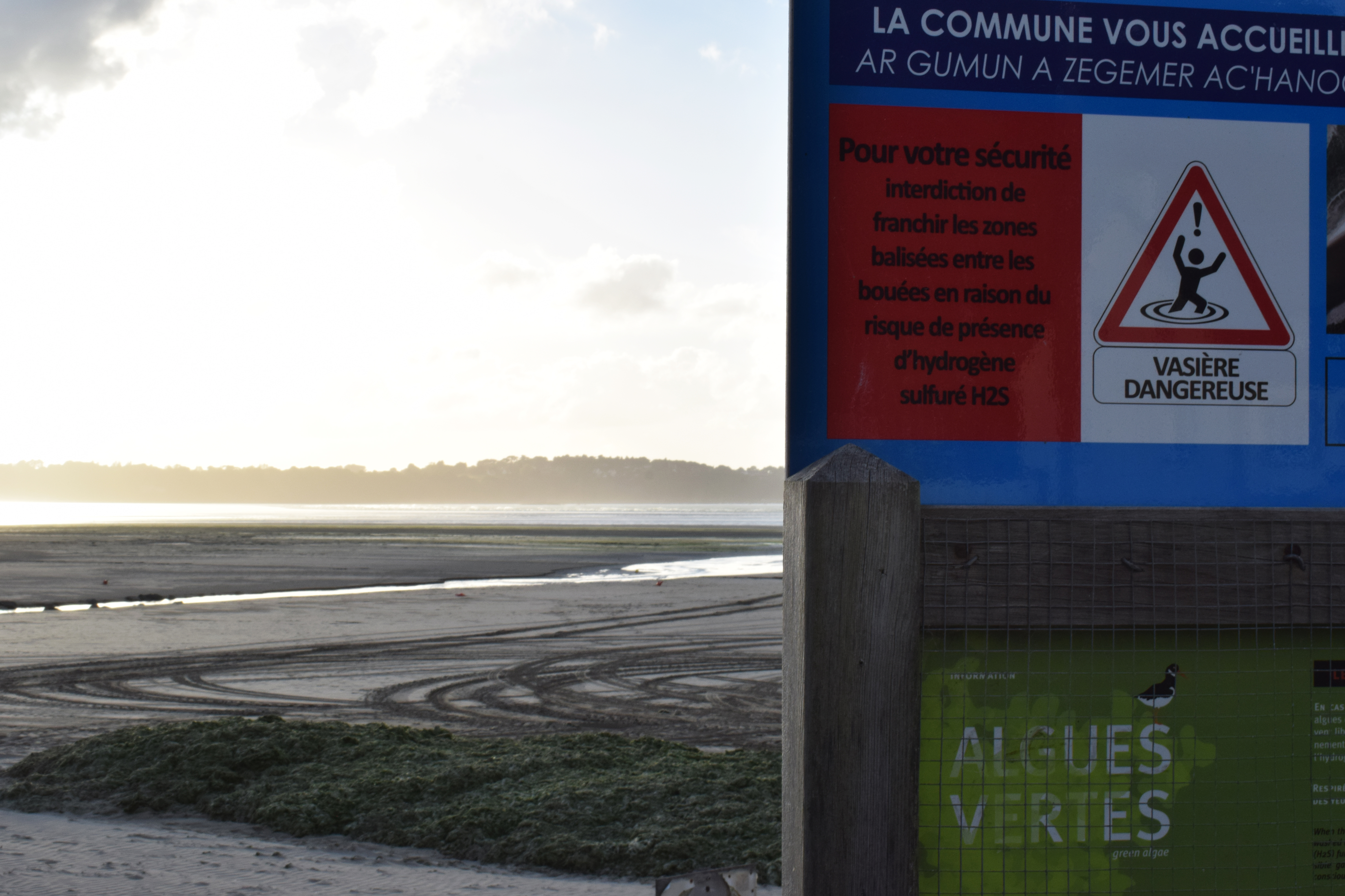Le long de la baie de Saint-Michel-en-Grève, des panneaux de signalisation alertent sur les algues vertes. © Aurélien Defer
